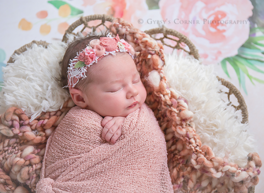 Lancaster Ny Newborn Photographer| Baby girl in a basket |Gypsy's Corner Photography-63Web