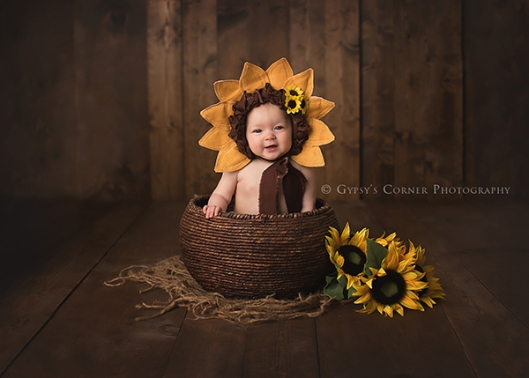 Best Buffalo NY Baby and Newborn Photographer|Baby girl as a sunflower|Gypsys Corner Photography