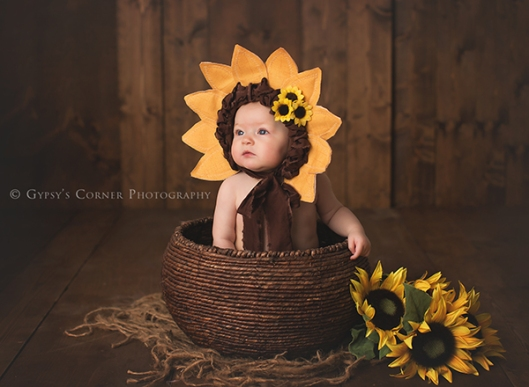 Buffalo Baby Photographer|Baby Sunflower|Gypsys Corner Photography