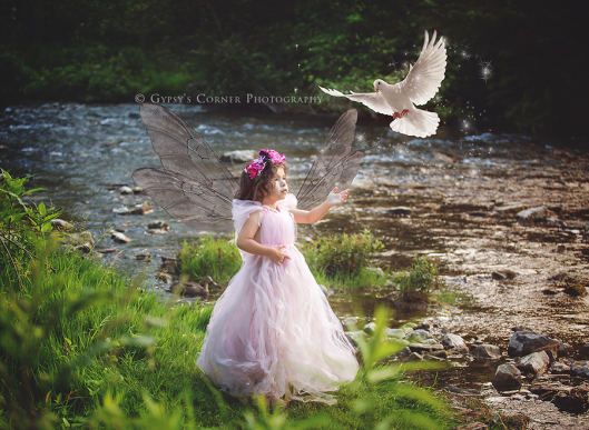 Buffalo Fairy Photographer| Girl Pink Fairy and dove|Gypsy's Corner Photography