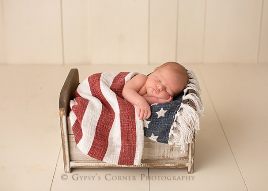 Buffalo NY Newborn Photographer|Baby Boy sleeping in stars and stripes|Gypsys Corner Photography-2Web