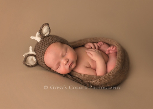 Williamsville NY Newborn and Baby Photographer|Baby wrapped and with a deer bonnet|Gypsys Corner Photography-17Web